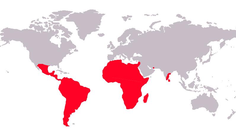 Cichlidae-Verbreitungsgebiet