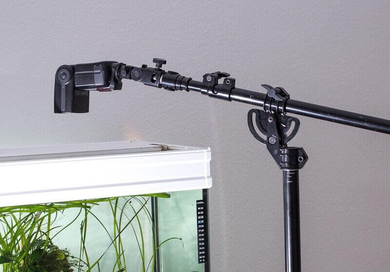 Aquarienfotografie, Galgenstativ mit Systemblitz