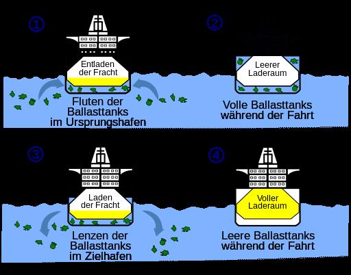 Ballastwasser